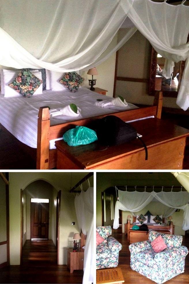 7 Reasons why you hsould make Uganda A Safari Destination & Tips for a memorable experience - Pkjulesworld